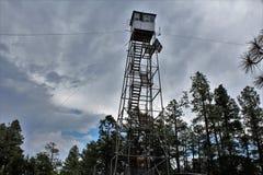 Rogacz Skacze światopogląd, Apache Sitgreaves las państwowy, Navajo okręg administracyjny, Arizona, Stany Zjednoczone obraz royalty free