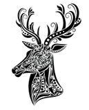 Rogacze. Obrazy Royalty Free