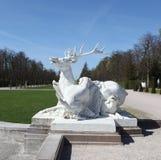 Rogacze Rzeźbią target699_0_ psami Fotografia Royalty Free