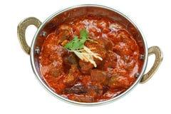 羊肉rogan josh,羊肉咖喱,印第安烹调 免版税库存图片