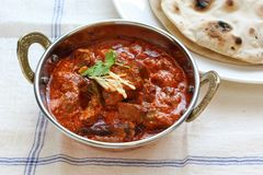 Rogan josh för Mutton, muttoncurry, indisk kokkonst royaltyfri fotografi
