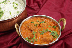 Rogan josh and rice Stock Images