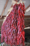 Rogen von Chile ristras Stockfotografie
