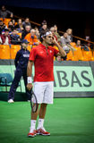 Roger Federer Στοκ εικόνα με δικαίωμα ελεύθερης χρήσης