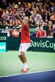 Roger Federer Obrazy Stock