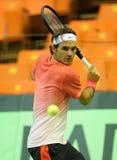 Roger Federer Fotografie Stock Libere da Diritti