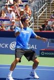 Roger Federer fotos de stock