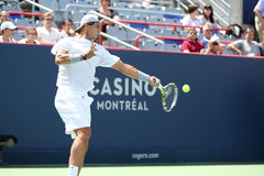 Rogers Cup Novak Djokovic Foto de Stock Royalty Free