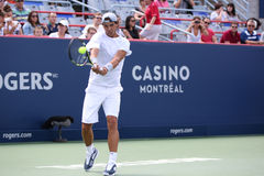 Rogers Cup Novak Djokovic Royalty Free Stock Image