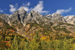 Rogers pass autumn colors Royalty Free Stock Photography