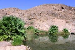 Rogers Spring Nevada Fotos de archivo