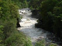 Rogie Falls In Spate Stock Image