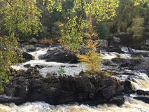 Rogie Falls / Waterfall Royalty Free Stock Image