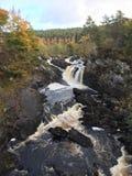 Rogie Falls / Waterfall Royalty Free Stock Photo