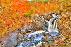 Rogie nedgångar, Skottland, i höst Fotografering för Bildbyråer