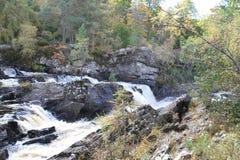 Rogiedalingen/Waterval Stock Afbeeldingen