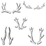 Rogu nakreślenie rogacz Ołówkowy rysunek ręką Obrazy Royalty Free