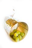 rogu winograd Obraz Stock