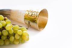 rogu winograd Fotografia Stock