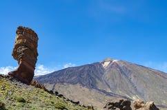 Rogue Cinchado nel parco nazionale di Teide con il EL Teide nel backg immagine stock libera da diritti