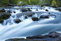 Rogue River Falls Royalty Free Stock Image