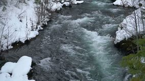 Rogue River Bend Raging Water Torrent Oregon State. The Rogue River is flowing unfrozen creating whitecaps deep in the forest in winter stock footage