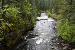 Rogue River in zuidwestelijk Oregon Royalty-vrije Stock Afbeelding