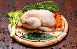 Roh - Huhn mit Gemüse Lizenzfreies Stockbild