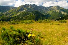 rohace Словакия гор Стоковые Изображения