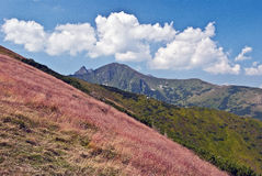 Rohace mountain group panorama during hiking to Trzydniowianski Wierch peak in Western Tatras mountains in Poland Stock Image