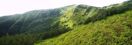 Rohace western Tatra mountains, Slovakia Stock Photography