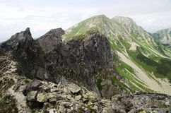 Rohace western Tatra mountains, Slovakia. Panorama view of Rohace in western Tatra mountains, Slovakia stock photography