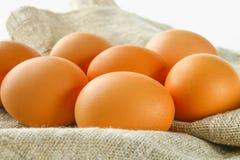 Rohe braune Hühnereien in einer Reihe auf Leinwand auf einem weißen Holztisch Bestandteile für das Kochen Stockfoto