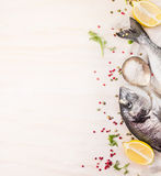 Rohe dorado Fische mit Mehrfarbenpfeffer, Zitrone ein Löffel des Salzes auf weißem hölzernem Hintergrund, Draufsicht Lizenzfreies Stockbild