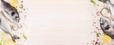 Rohe dorado Fische mit Zitrone, und Gewürzen auf weißem hölzernem Hintergrund, Draufsicht, Fahne für Website mit dem Kochen Lizenzfreie Stockfotos