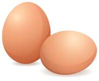 Rohe Eier Stockfoto