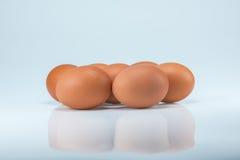 Rohe Eier auf weißem Hintergrund Lizenzfreie Stockfotos