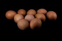 Rohe Eier auf weißem Hintergrund Lizenzfreie Stockfotografie