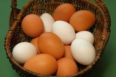 Rohe Eier in einem Korb Stockbilder