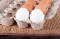 Rohe Eier in einem Pappbehälter Stockfotografie
