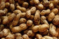 Rohe Erdnüsse Lizenzfreie Stockfotos