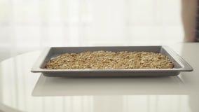 Rohe Erdnüsse auf Backblech stock video footage