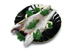 Rohe Fische Stockfotografie