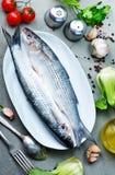Rohe Fische Lizenzfreies Stockbild