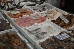 Rohe Fische für Verkauf lizenzfreies stockfoto