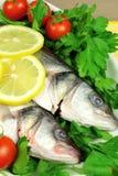 Rohe Fische mit Gemüse Lizenzfreie Stockfotografie