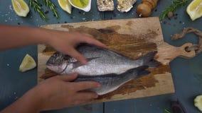 Rohe Fische nehmen und zeigend stock video