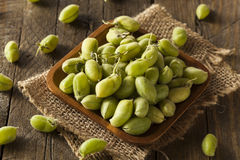 Rohe frische organische grüne Kichererbsen-Bohnen Lizenzfreies Stockbild