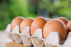 Rohe Hühnereien der Nahaufnahme im Eikasten auf Tabelle und grünem backgrou Stockfotografie