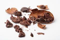 Rohe Kakaobohnen Stockbild